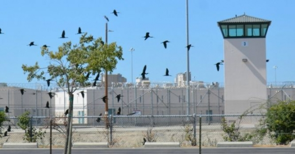With the new prison reform measure passed, up to 10,000 California non-violent detainees may be eligible for early release.