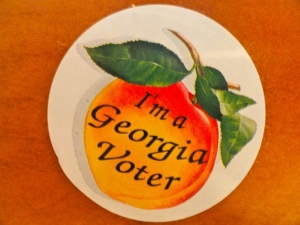 Too Much Voting Going On in GA, Says Republican Bibb County, GA Election Board Member