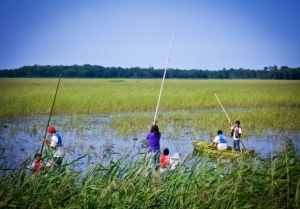 Ojibwe youth tend to a wild rice crop on Leech Lake reservation in Minnesota. An Enbridge pipeline cuts directly through the reservation.